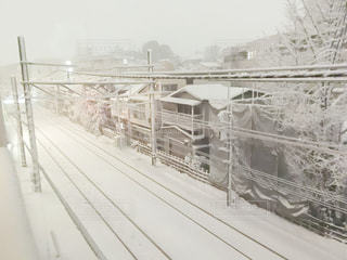 雪景色の写真・画像素材[973647]