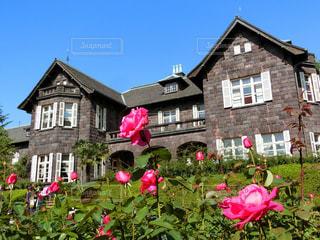れんが造りの建物にピンクの花のグループの写真・画像素材[981412]