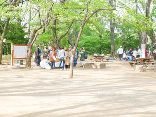 公園の人々 のグループの写真・画像素材[1122227]
