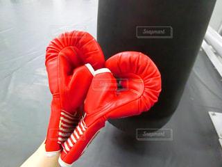 赤のボクシンググローブ - No.1156999