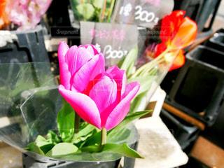 テーブルの上の花の花瓶の写真・画像素材[1158980]