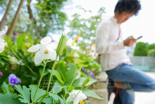 花壇近くにいるスマホ(スマートフォン)をいじる若い男性 - No.1167545