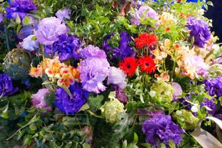 近くに紫の花のアップの写真・画像素材[1195754]