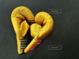 キックボクシングジムでのトレーニングの写真・画像素材[1320110]