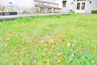 近くの建物の前に緑の草原の写真・画像素材[1339467]