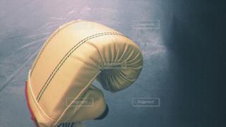 キックボクシングジムでグローブの写真・画像素材[1374303]