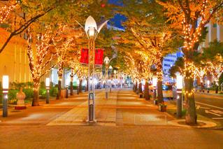 神戸ガス燈通りのイルミネーションの写真・画像素材[1550334]