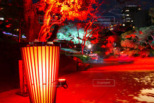 夜のライトアップされた街の写真・画像素材[1588249]
