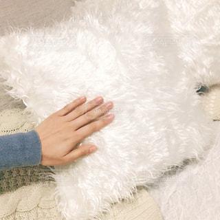 熊のぬいぐるみを持っている人の写真・画像素材[1737493]