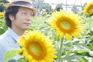 黄色い花の中の人の写真・画像素材[2110313]