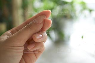 手を閉じるの写真・画像素材[2304304]