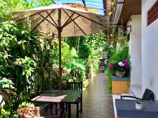 撮影地→バリ、クタ近辺のKusuma House Hotel.の写真・画像素材[1247982]