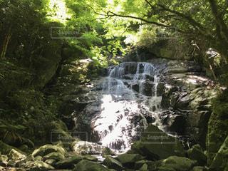 福岡の滝の写真・画像素材[3341272]