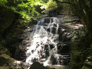 福岡の滝の写真・画像素材[3341273]