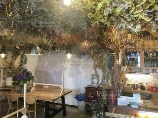 お洒落なカフェのレイアウトの写真・画像素材[3369062]