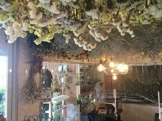 お洒落なカフェの店内の写真・画像素材[3369074]