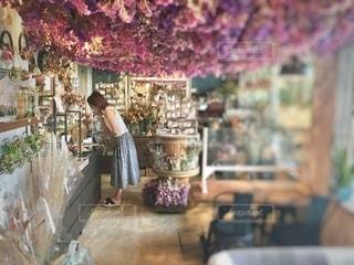 お洒落なカフェ店内の写真・画像素材[3369110]