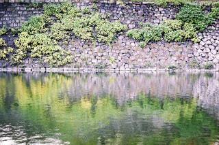 木々 に囲まれた水面 - No.877188