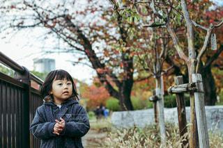 木の隣に立っている女の子 - No.878378