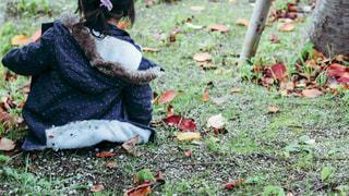 草の上に座る女の子の写真・画像素材[879605]