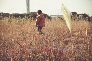 自然の中の子供の写真・画像素材[937982]