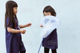 子どもの虫捕りの写真・画像素材[1167517]