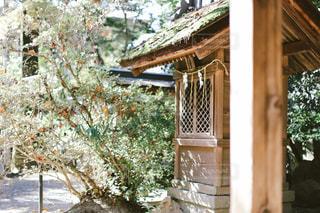 神社の写真・画像素材[1631985]
