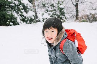 雪の日の写真・画像素材[1788954]