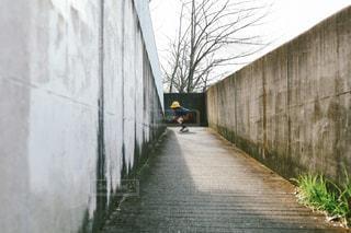 幼稚園の帰り道の写真・画像素材[1826778]