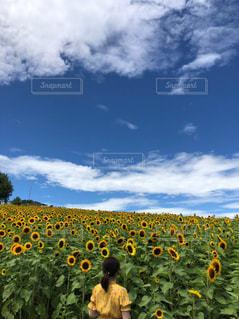 曇り空を歩く人々のグループの写真・画像素材[2373585]