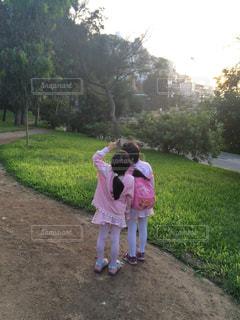 草の中に立っている少女の写真・画像素材[1763669]