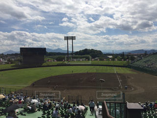 夏,野球,球場,スポーツ観戦