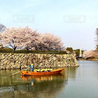 姫路城の桜と舟の写真・画像素材[1620240]
