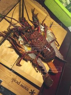 食べ物の写真・画像素材[278119]
