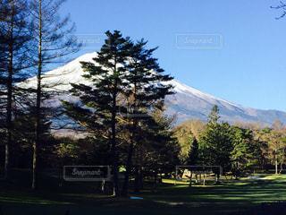 富士山の写真・画像素材[280165]