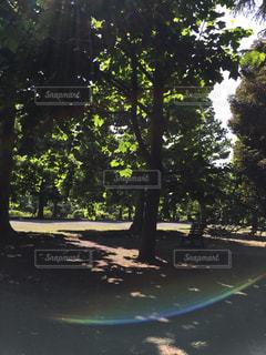 公園 - No.277621