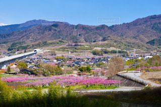 春 - No.506142