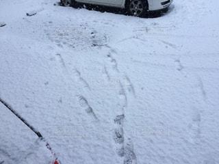 雪の足跡 - No.947363