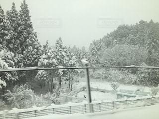 冬 - No.311931
