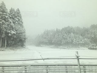 冬 - No.311933