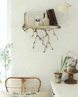 植物 - No.4221