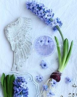 花の写真・画像素材[4219]