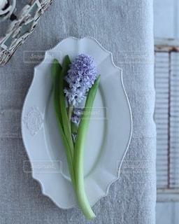 花の写真・画像素材[4208]