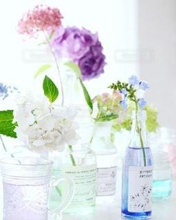 植物の写真・画像素材[4179]