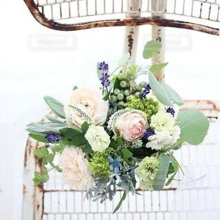 花の写真・画像素材[4147]
