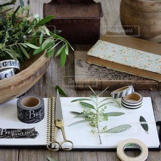 植物の写真・画像素材[4145]