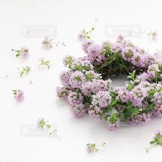 花の写真・画像素材[4141]