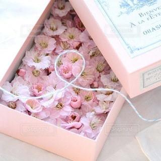 花の写真・画像素材[4132]