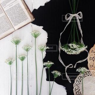 花の写真・画像素材[4100]