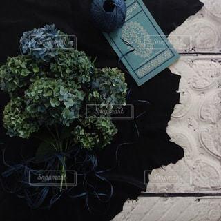 植物の写真・画像素材[4093]